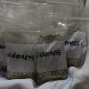 Wilderness in a Bag
